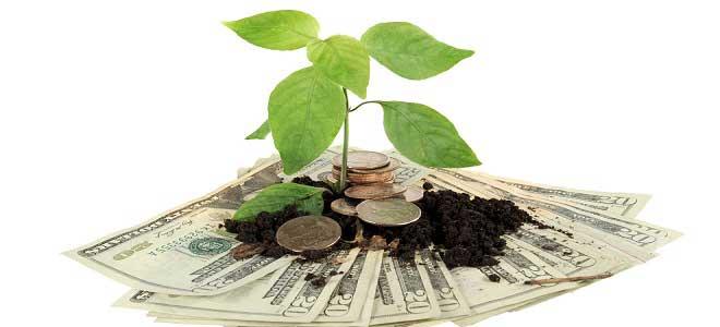İnternetten Tarımsal Emtia Yatırımı Nasıl Yapılır?