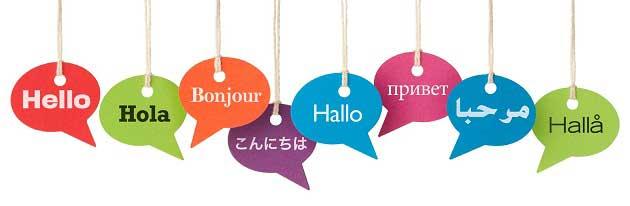 Çeviri ve Asistanlık Yaparak Para Kazanmak