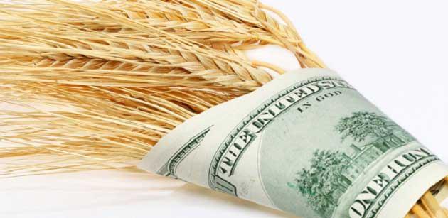 Buğday Ticareti Nasıl Yapılır?