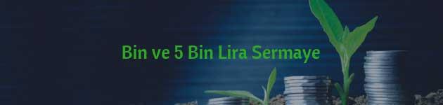 Bin ve 5 Bin Lira Sermaye ile Yatırım Yapılacak İşler