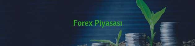 Forex Piyasasında Yatırım Yapmak