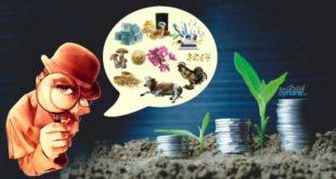 Nereye Yatırım Yapmalı: Küçük Yatırımcı Neye Yatırım Yapsa Kazanır?