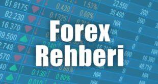 Forex Rehberi: Forex Hakkında Bilmeniz Gereken Her şey!