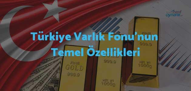 Türkiye Varlık Fonu'nun Temel Özellikleri