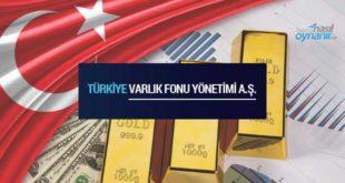 Ulusal Varlık Fonu Nedir? Türkiye Uygulaması Hakkında Bilinmesi Gerekenler