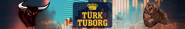Türk Turborg (TBORG) Hissesi Hakkında Uzman Yorumları, Analizleri ve Tahminleri