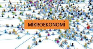Mikroekonomi Nedir? İncelediği Konular ve Hakkında Kısaca Bilgiler