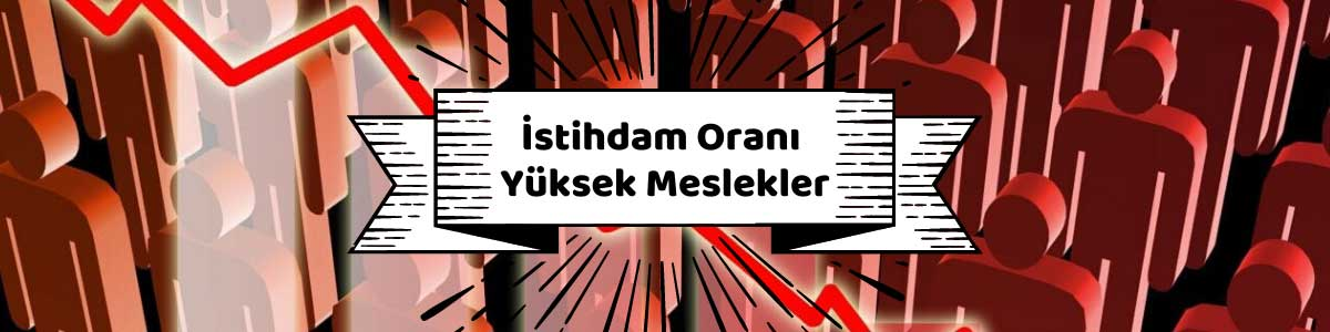 Türkiye'de İstihdam Oranı En Yüksek Meslekler