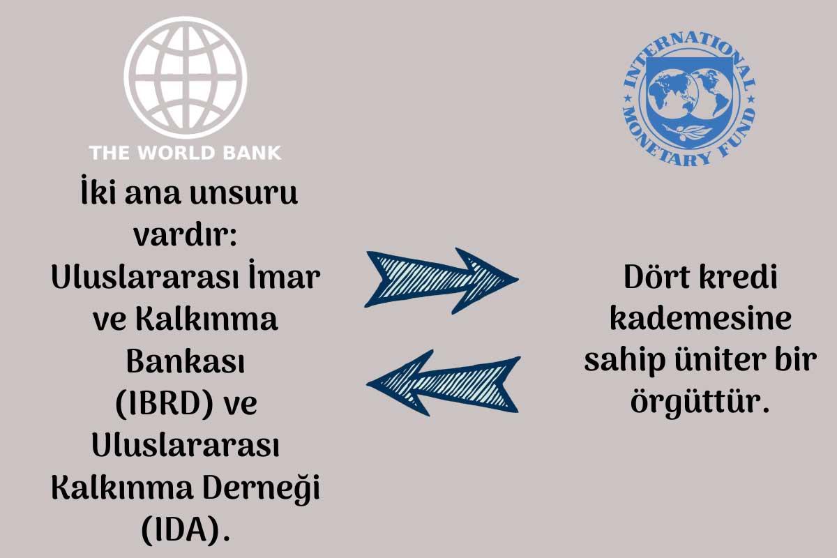 Organizasyon Yapısı Farkları