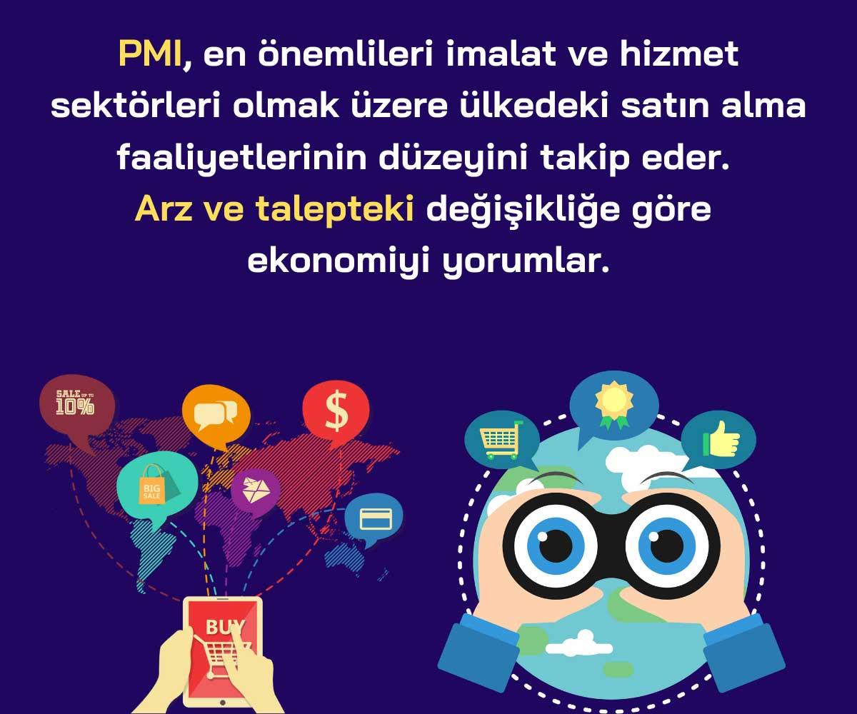 İmalat ve Hizmet PMI Verileri