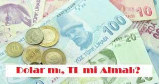 Dolar mı, TL mi Almalı?