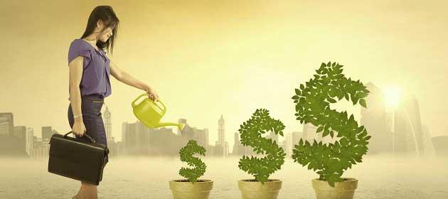 Hisse Senedi Yatırımının Mantığını Anlayın