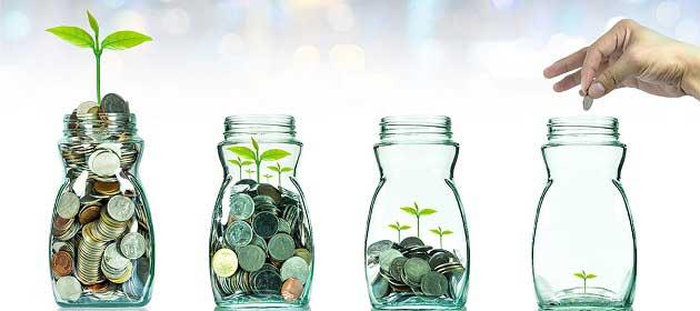 Paranın Tamamını Tek Bir İşleme Bağlamamak Gerekiyor