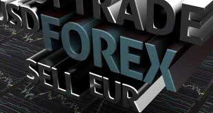 Yeni Başlayanlara Özel; Forex Piyasası Kullanım Kılavuzu